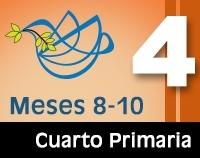 4P - Meses 8-10 Color-0