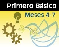 IB - Meses 4-7 Color-0