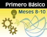 IB - Meses 8-10 Color-0