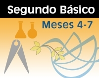 IIB - Meses 4-7 Color-0